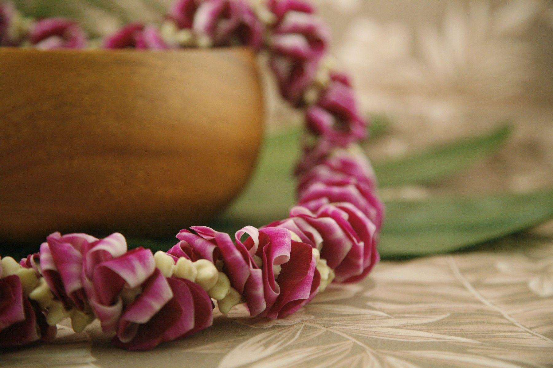 Choose Your Delivery Date! Fresh Jade Orchid Lei Flower Lei Graduation Weddings Luau Hawaiian Lei Tropical Fresh Lei Orchid Lei Jade