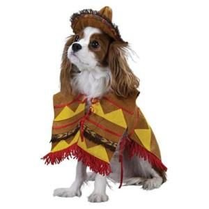 Lil Bandito Pet Costume Dogs In Halloween Costumes Dog In