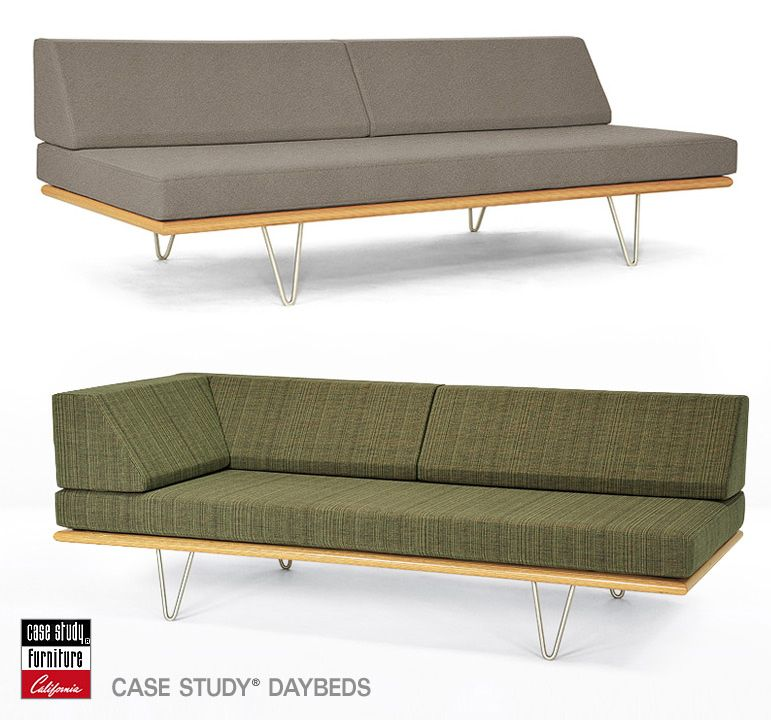 Case Study Daybeds Modernica Sofa Ideas Loveseats Guest Bed