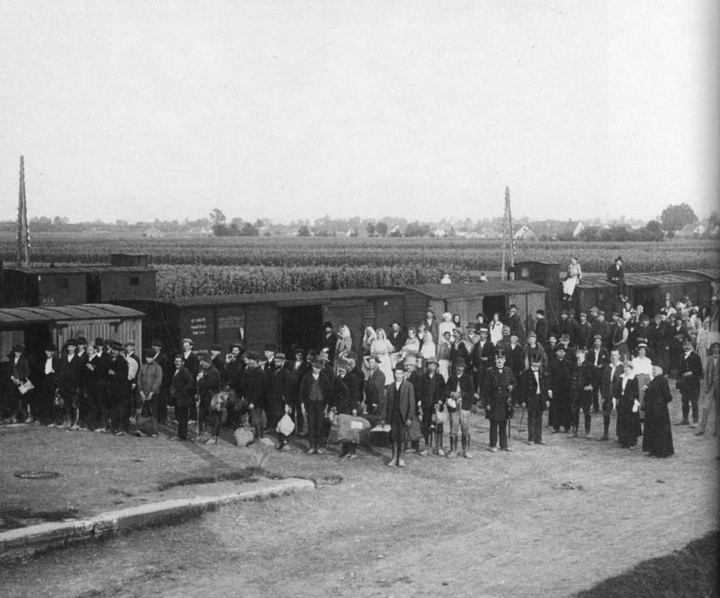 Refugee Transport From Serbia In Leibnitz Styria