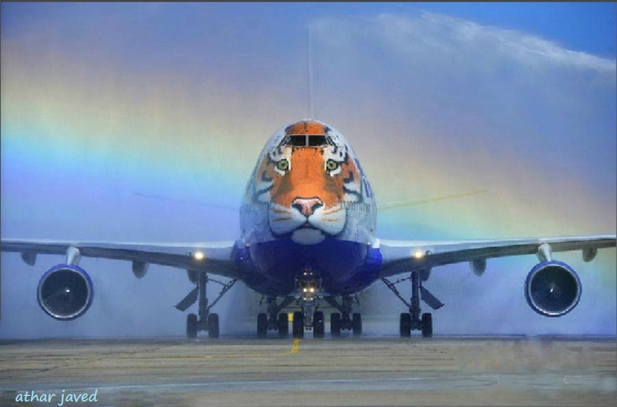 Russian Carrier Transaero Unveils A Special Boeing 747 400 Plane
