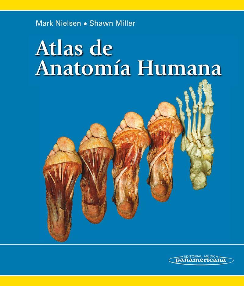 ATLAS DE ANATOMÍA HUMANA Autores: Mark Nielsen / Shawn Miller ISBN ...