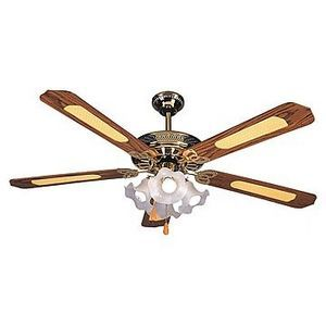 What Could Be Wrong With The Ceiling Fan If The Pull Chain Will