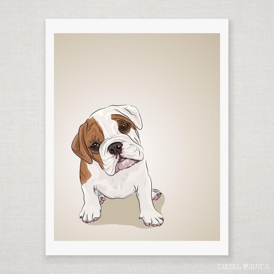 Image Result For English Bulldog Illustration Puppy Art
