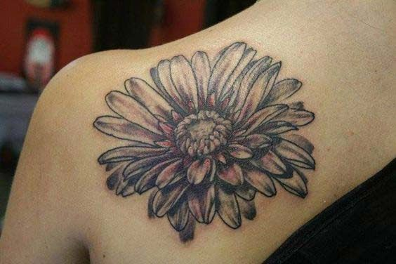 50 Best Daisy Tattoos Designs And Ideas With Meanings Daisy Tattoo Daisy Flower Tattoos Daisy Tattoo Designs