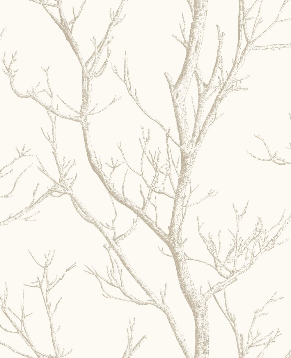 Silhouette Tree by Albany White Wallpaper CB42134