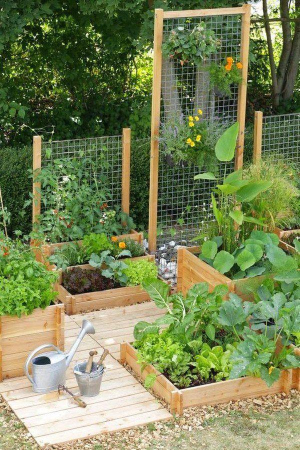 Raised Garden Beds With Trellis