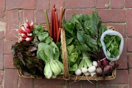 You have a family doctor and dentist, but what about a family farmer? Here's how you can eat local and healthy this year... even if you can't grow your own.