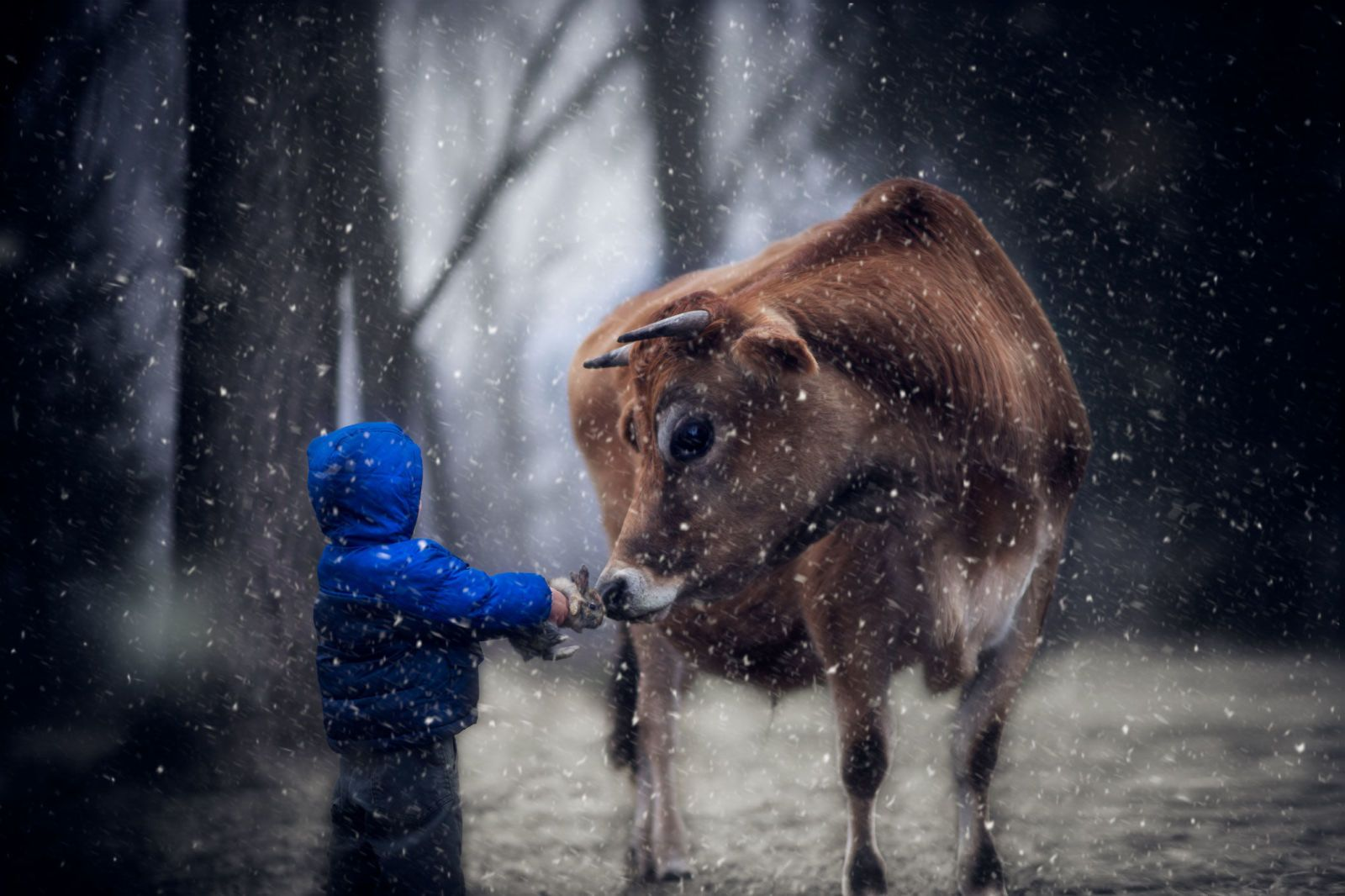 This Dad's Stunning Amateur Photography Captures the Beauty of Growing Up on a Farm  - CountryLiving.com