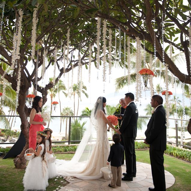The Couple Said I Do During A At Plumeria Point Overlooking