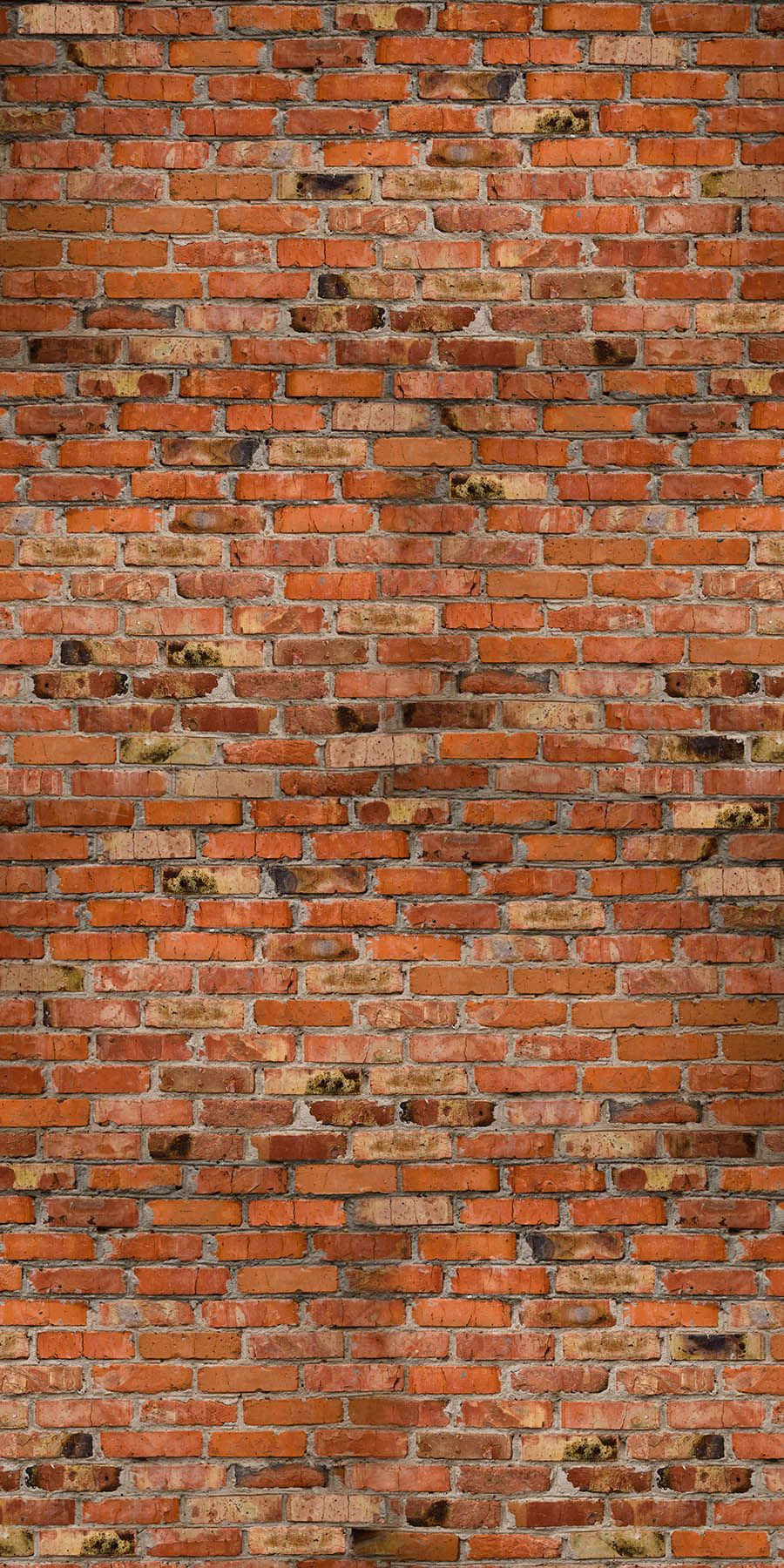 idea library photographic and illustrated wall panels on brick wall id=20351