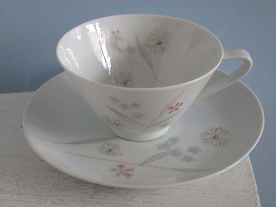 Hutschenreuther Diadem  8730 Blumen Teetasse Kaffeetasse + Untertasse 50er /60er