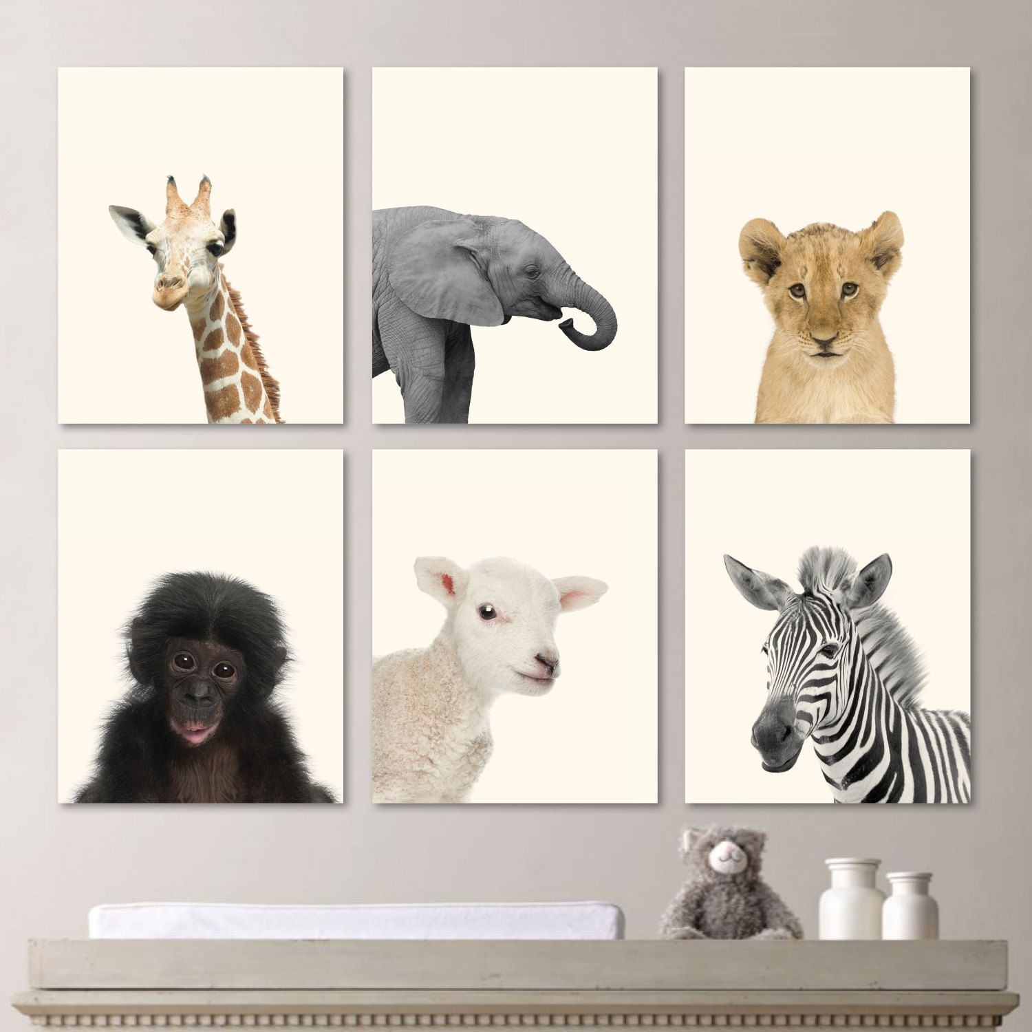 I love this adorable looking real baby animal prints for