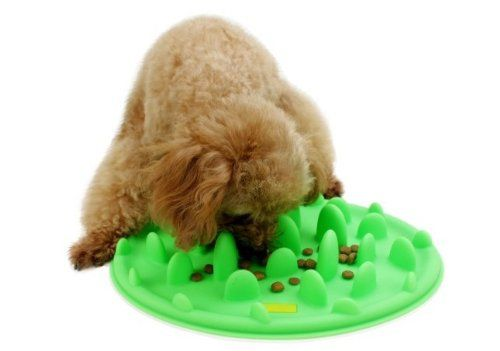Interactive Pet Feeder Slow Feed Silicone Dog Bowl Green