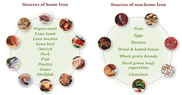 Levels of iron vary with it's source. Know the difference