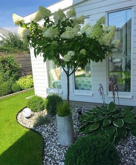 40 einfache und schöne Garten Landschaftsbau Ideen auf ein Budget nycrunningblog.com #frontyardlandscaping #frontyardlandscapingideas #frontyardlansc #schönegärten