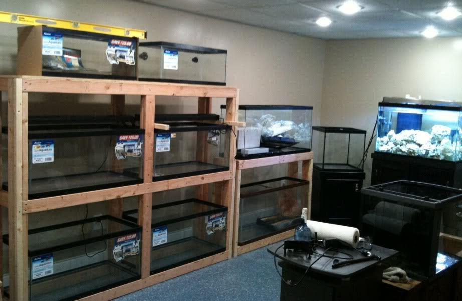 Tank Rack System Support Long Edge Only Reef Central Online Community Pets Aquarium