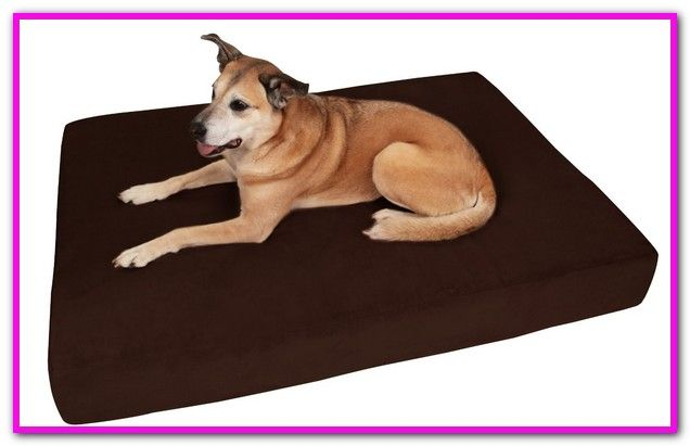 Extra Large Outside Dog Beds Find Great Deals On Ebay For Bed