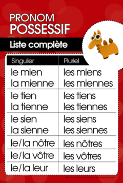 Les Possessifs Teaching French French Flashcards French Language Lessons