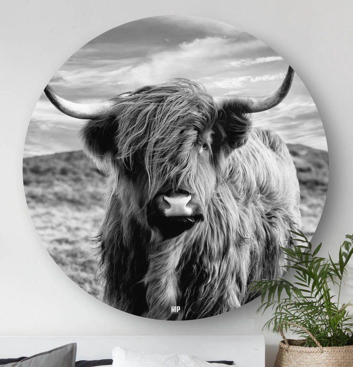 Hip Orgnl Schilderij Highlander Schotse Hooglander Koe 40cm Wandcirkel Dieren In 2021 Wanddecoraties Woonkamer Schilderijen Dierlijke Schilderijen