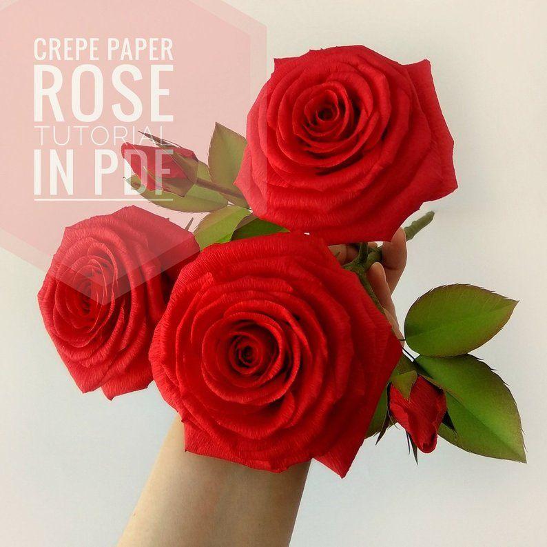 Paper Rose Tutorial Diy Crepe Paper Rose Flower Class Crepe Etsy Crepe Paper Roses Paper Roses Paper Flowers