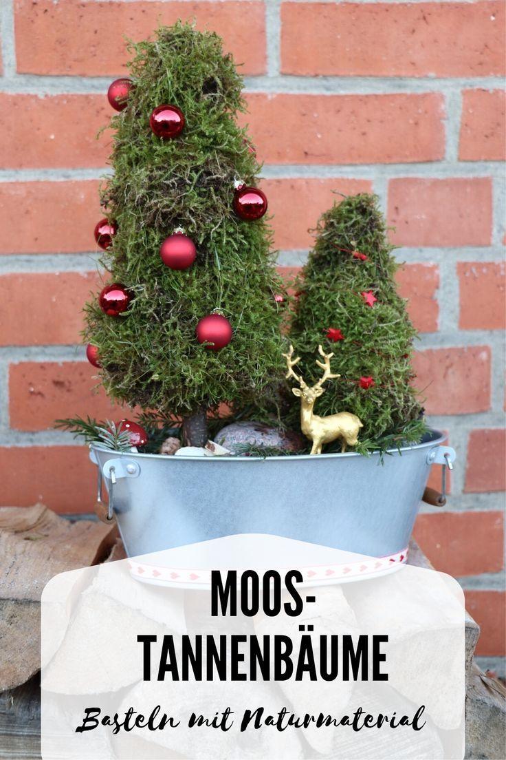 Moos Tannenbaume Diy Fur Ein Adventsgesteck Lavendelblog Diy Weihnachten Adventsgesteck Weihnachtsideen