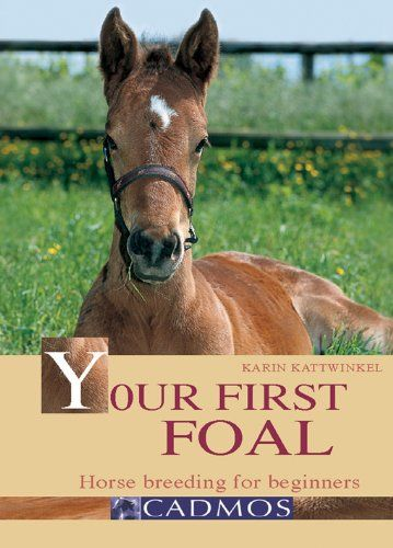 Your First Foal: Horse Breeding for Beginners (Bringing You Closer) by Karin Kattwinkel