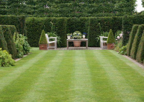 Gras In Tuin : Tuin met gras google zoeken tuin