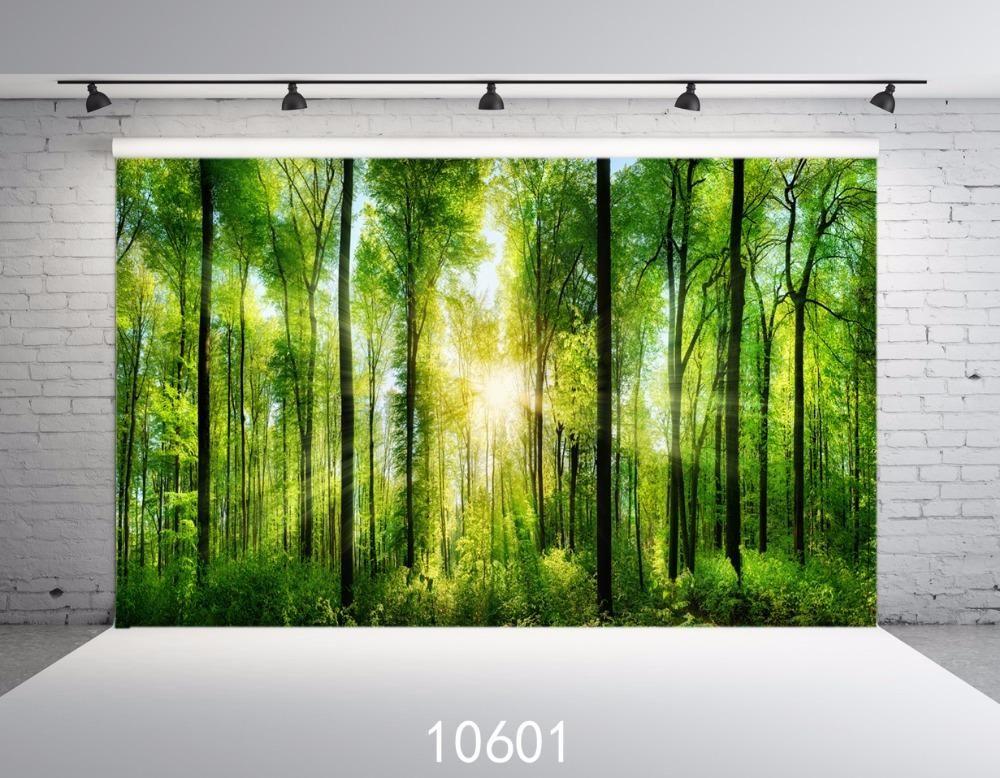 Siltre mobili ~ Forest sunshine backdrops photo background photography backdrop