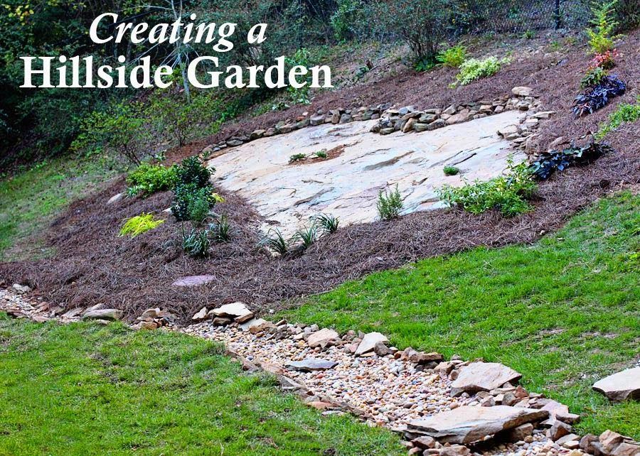 Hillside landscape makeover with southern living plant for Hillside landscaping plants