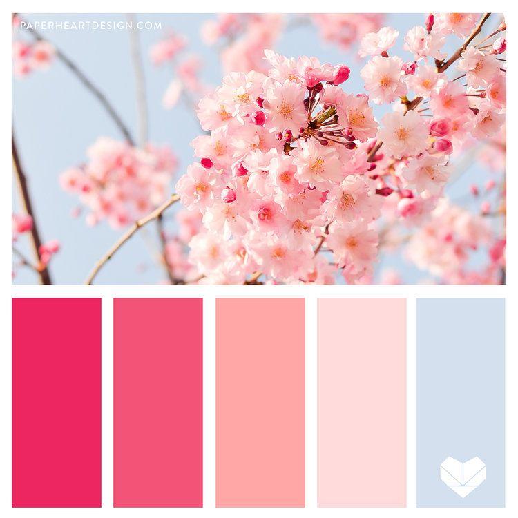 Color Palette Spring Cherry Blossoms Paper Heart Design Color Palette Pink Spring Color Palette Color Schemes Colour Palettes