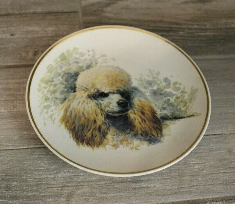 Vintage Collector Plate Poodle Dog Bavaria Thiersheim Collectible Decor Decorative Plates Ideas Of Decorative Plat Poodle Dog Poodle Blue Decorative Plate