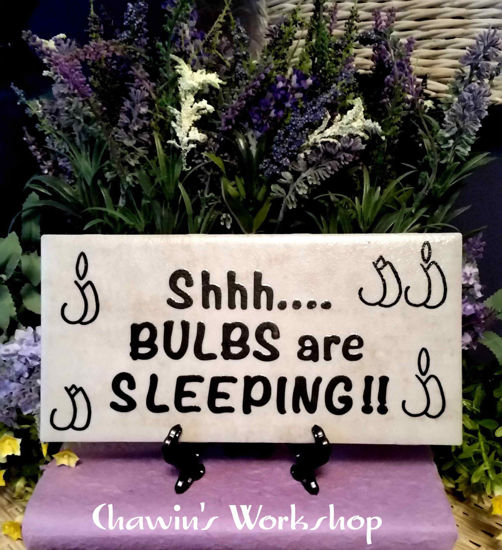 Shhh Bulbs Are Sleeping Funny Garden Sign Garden Art Decor