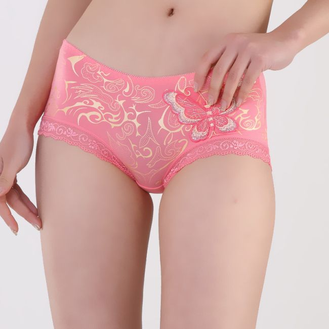 Lady-Sexy-95-Microfiber-5-Spandex-Woman-Intimate-Lace-Panties-Girl ...