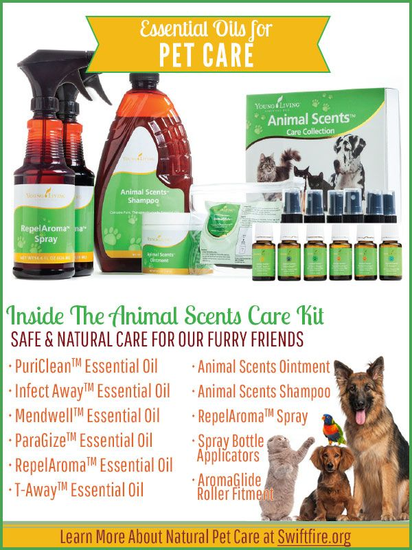 Safe & Natural Pet Care & Grooming with Essential Oils