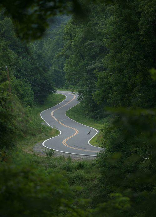 Buncombe County, North Carolina
