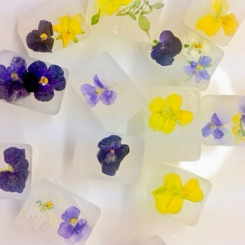 Edible flower ice cubes-The Vegetarian Atkins diary : Edible flowers