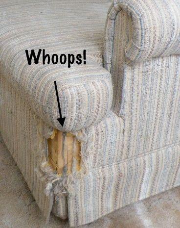 Cat Scratch Sofa