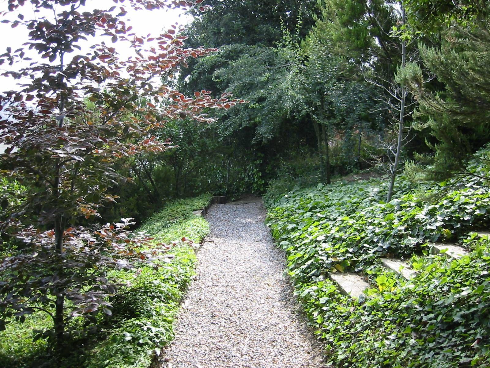 Disear un jardin finest como decorar el jardin de mi casa for Como disenar el jardin de mi casa