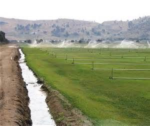 System Watering A Field Of Crops In California S Central