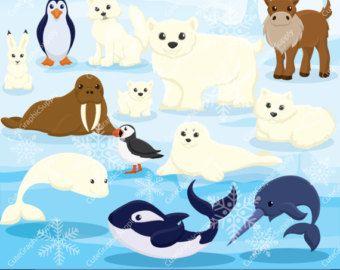 Arctic Animals Clipart And Paper Set Arctic Clipart Digital Download Animal Clipart Arctic Animals North Pole Animals