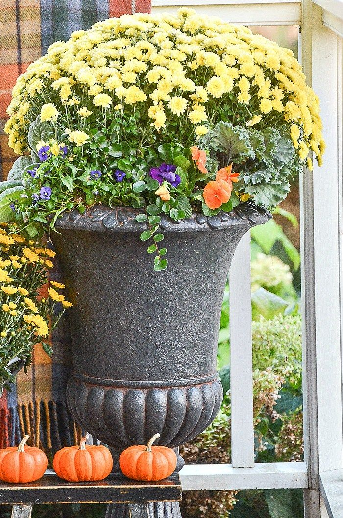OUTDOOR SMALL SPACE FALL DECORATING | Fall decor, Fall ...