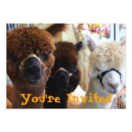 Llama Llama Invitation | Zazzle.com | Happy birthday llama ...