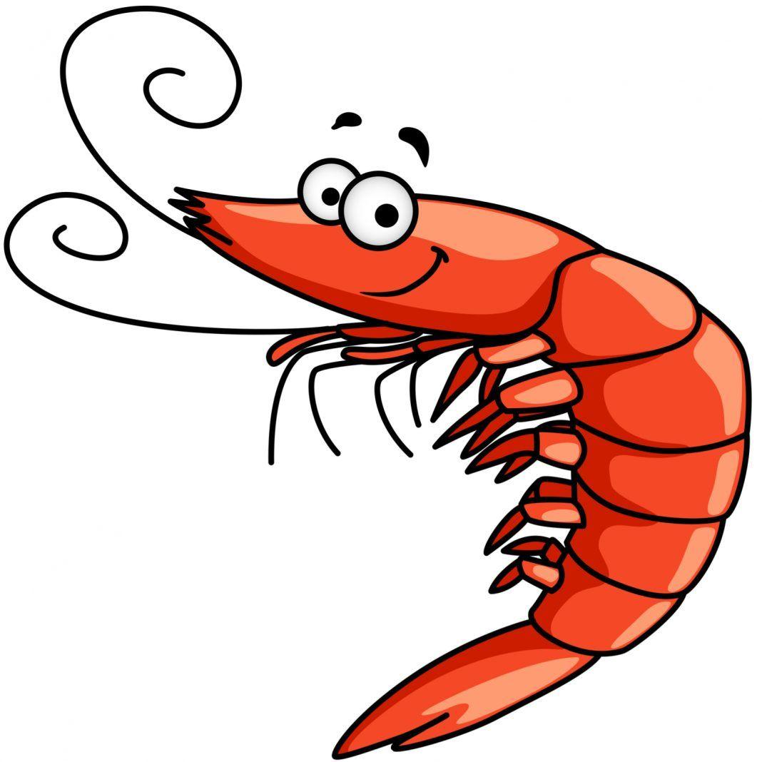 shrimp frogs and drugs are clogging the ethereum blockchain rh pinterest com au Blue Fish Clip Art Raw Fish Clip Art