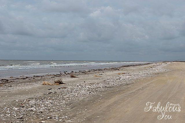 Holly Beach ~ Louisiana | The Cajun Riviera #louisiana #cajun ...