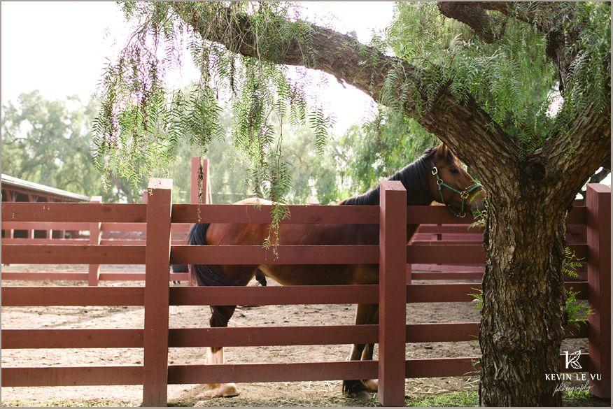 03a70fb3c97089a9dc572cf820ff1d8f - Rancho Los Alamitos Historic Ranch And Gardens
