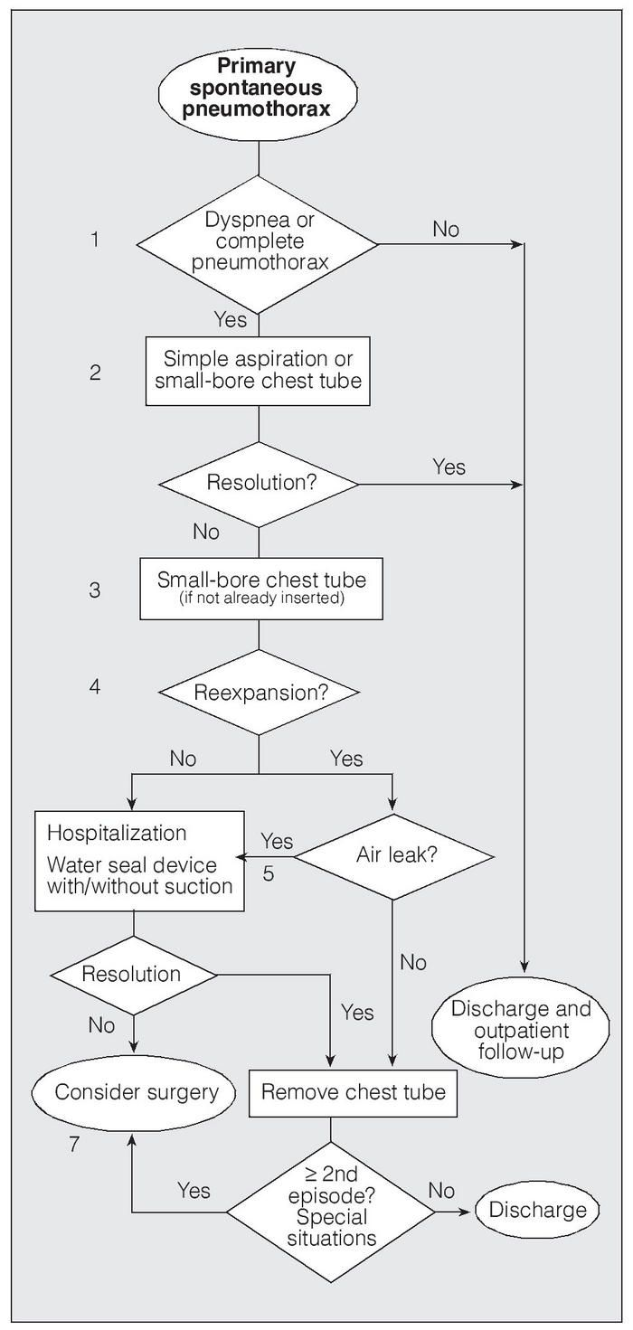 Pneumothorax treatment guidelines - Guidelines For The Diagnosis And Treatment Of Spontaneous Pneumothorax