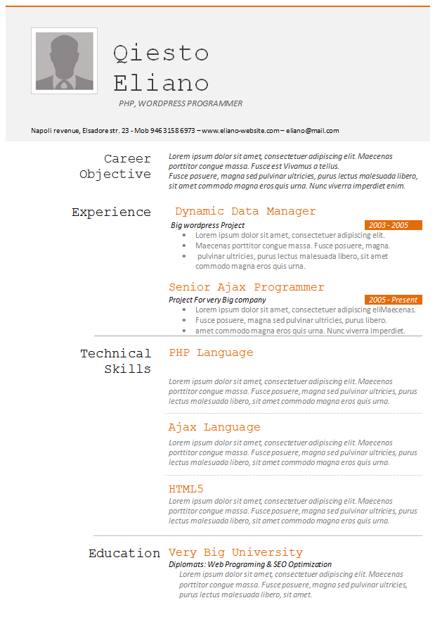 Programmers Resume Template Job Resume Examples Job Resume Format Resume Templates