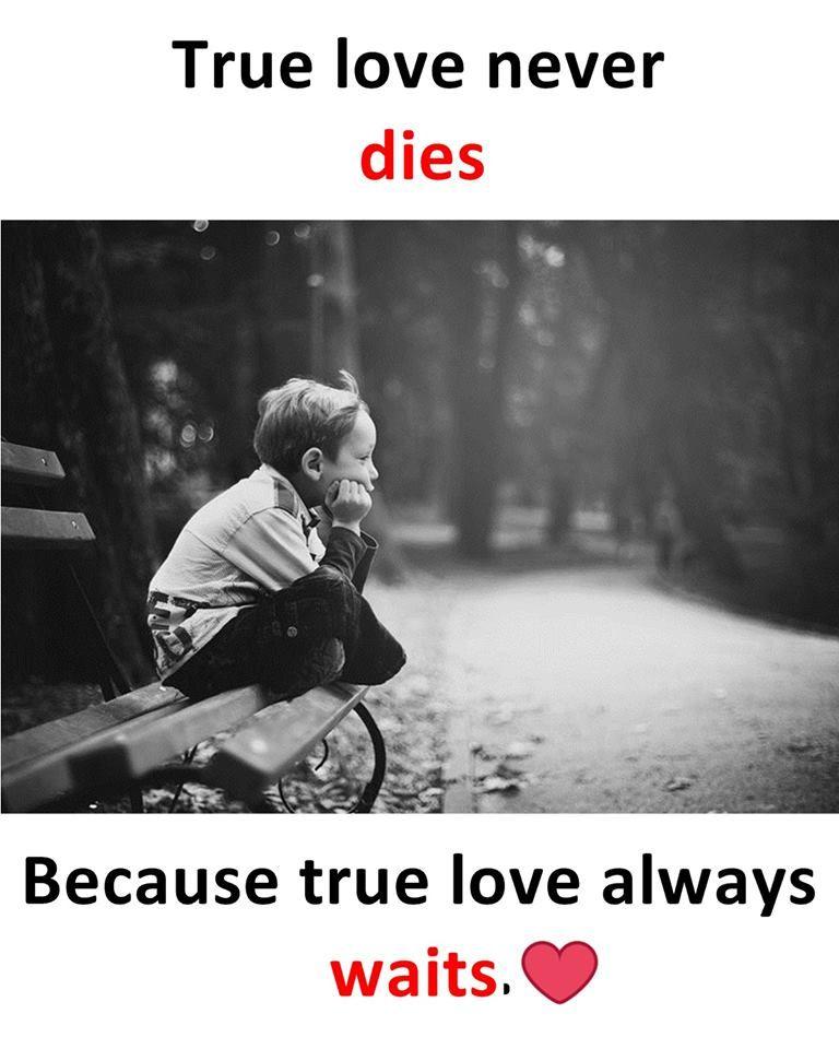 True Love Never Dies Because True Love Always Waits Cute Love Quotes First Love Quotes Love Quotes For Girlfriend