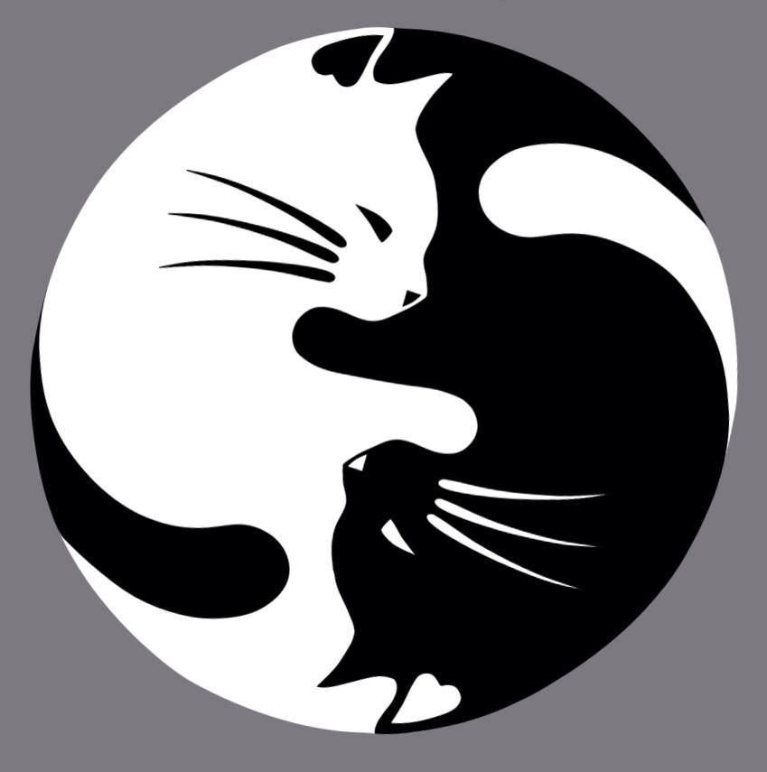 Yin Yang Favorites 3 Pinterest Yin Yang Cat And Stenciling